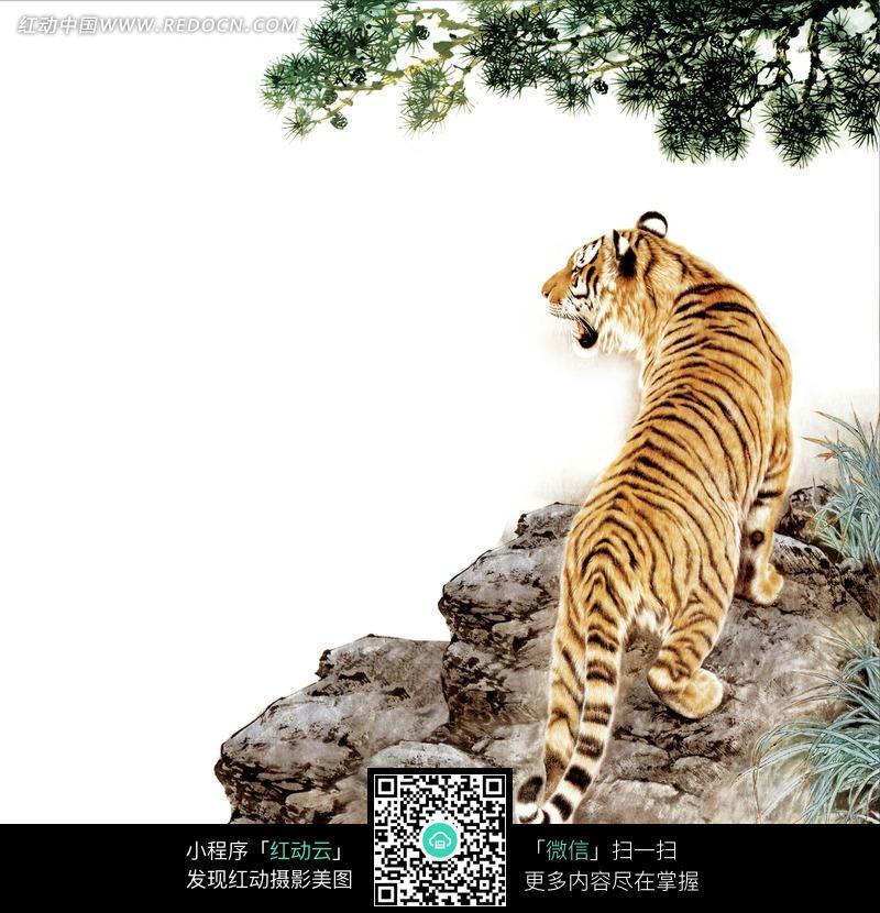 中国工笔动物-立于石上的老虎