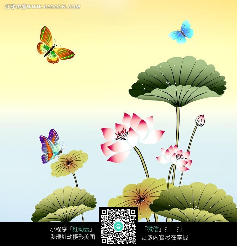 荷叶 彩蝶 蝴蝶 绘画 插画 风景图片 自然风景 自然风光 风景绘画 插画