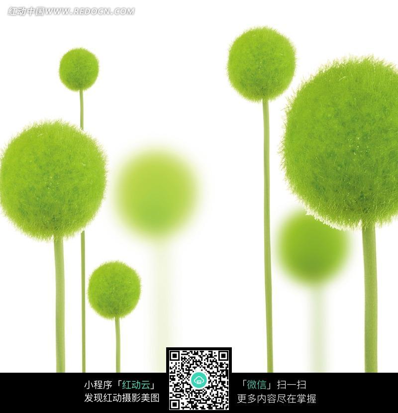 绿色藤蔓插画手绘