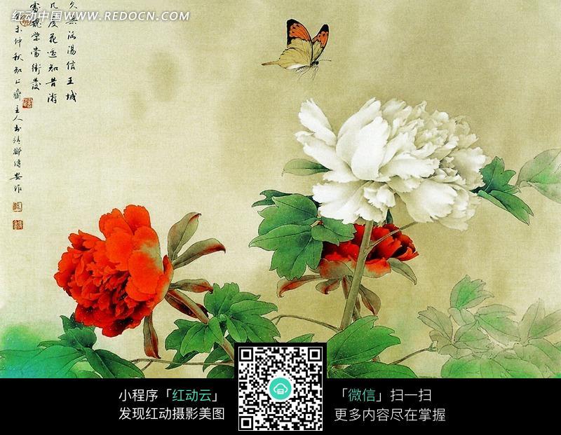 蝴蝶牡丹工笔画jpg图片