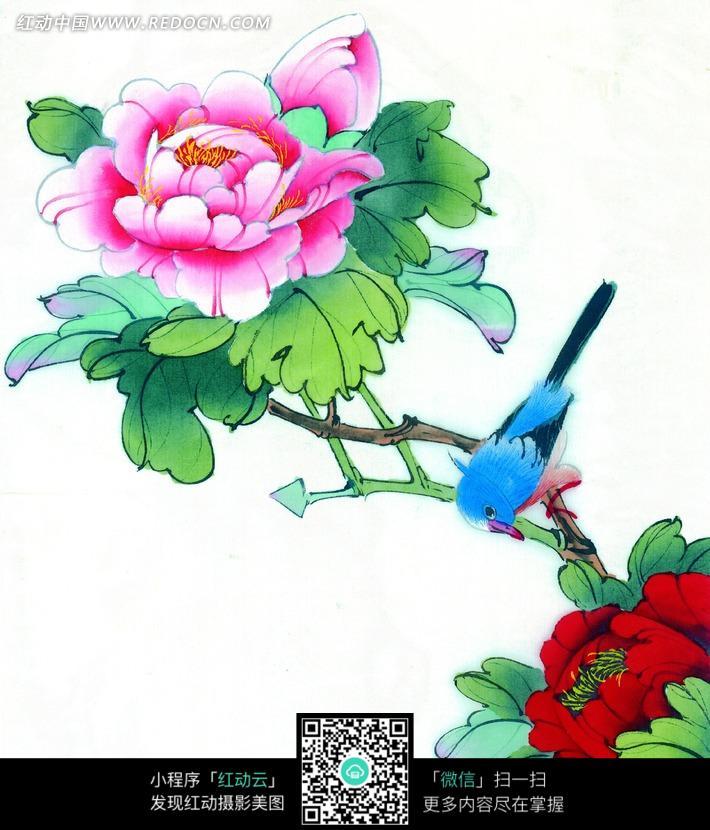 中国工笔花鸟-梅花枝头的喜鹊