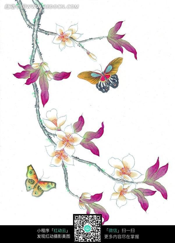 中国工笔花鸟 花朵和蝴蝶图片免费下载 编号860473 红动网