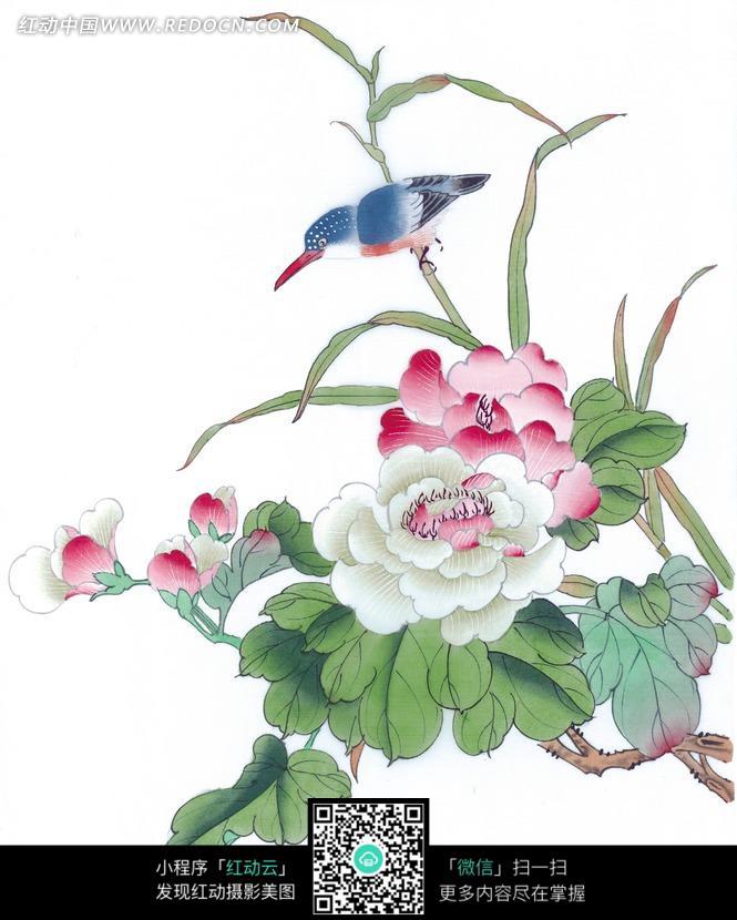 中国画牡丹花_免费素材 图片素材 文化艺术 书画文字 中国工笔花鸟-牡丹花和翠鸟