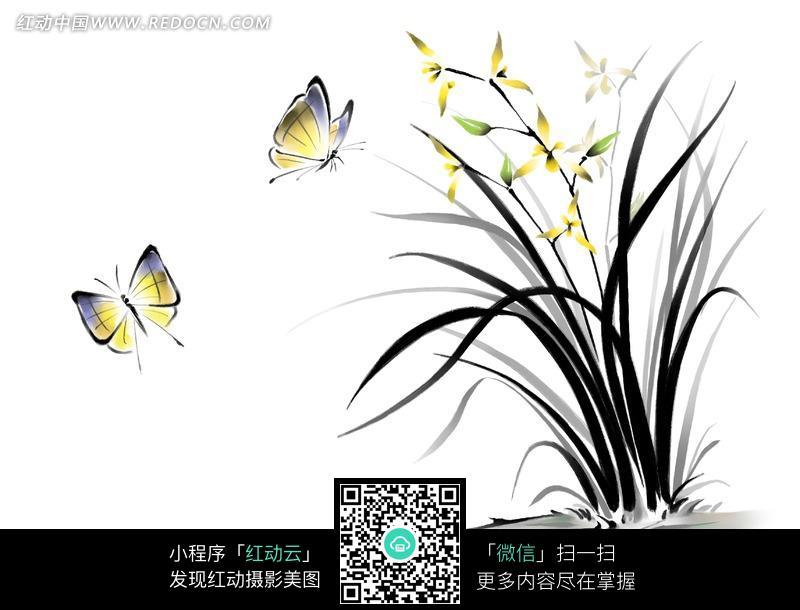 中国工笔花鸟 蝴蝶和兰花图片 书画文字图片