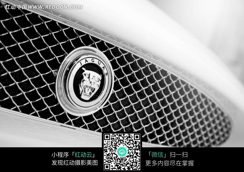 捷豹汽车车标细节特写图片高清图片