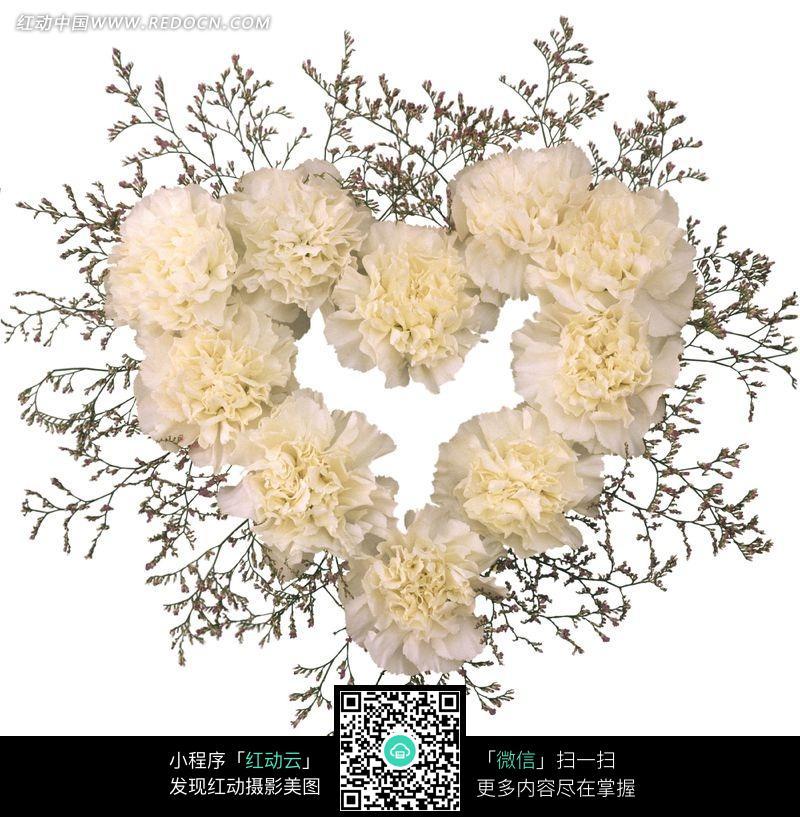 白色康乃馨组成的心形图案图片