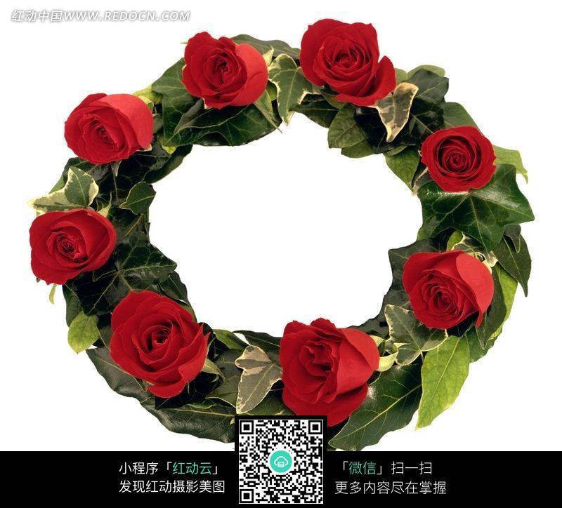 玫瑰花和叶子围成的圆环