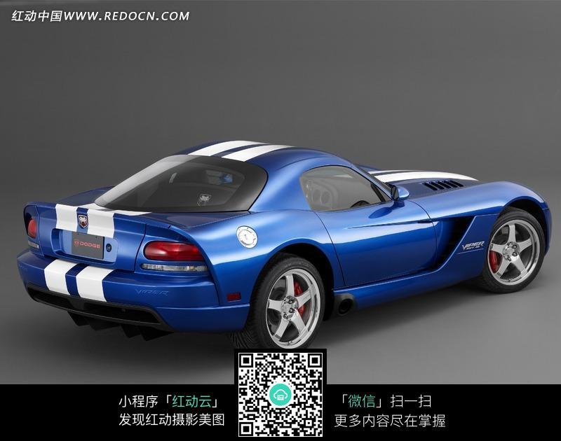 蓝色道奇蝰蛇汽车尾部 美国制造 交通工具 图片素材 生活用品 生活百科高清图片