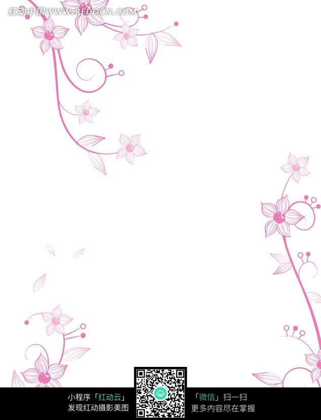 五瓣花朵 竖纹花瓣 叶子 卷曲的藤蔓 手绘 背景 花纹 装饰 白色背景