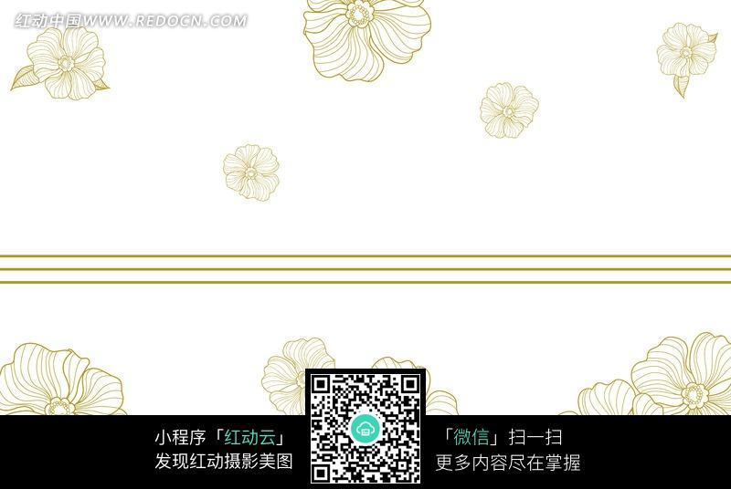 金色线条花朵白色背景图