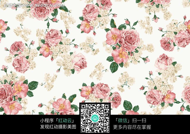 玫瑰花朵/花蕾/叶子构成的图片