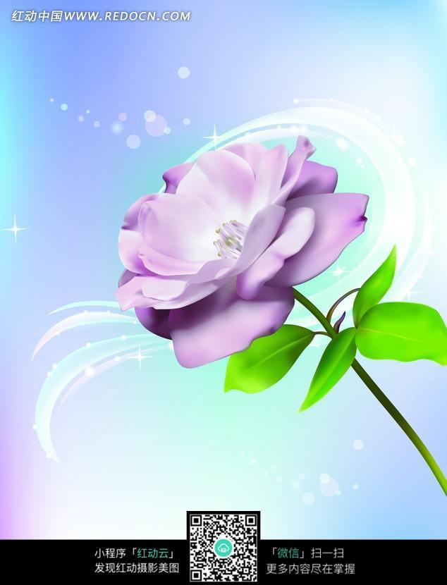 弧线光芒上的手绘紫玫瑰花