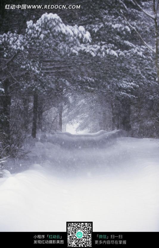 树林古亭手绘风景
