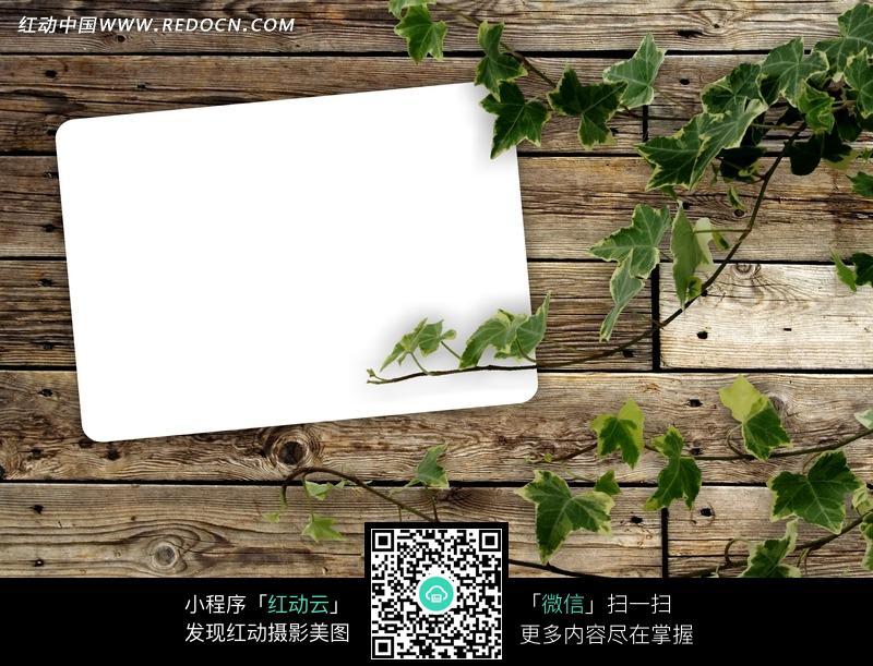 绿叶木板背景相框图片