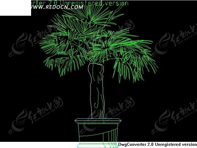 cad图 盆景 植物 立面图