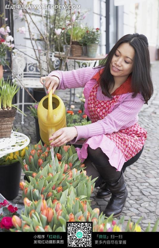 蹲着给鲜花浇水的女人图片