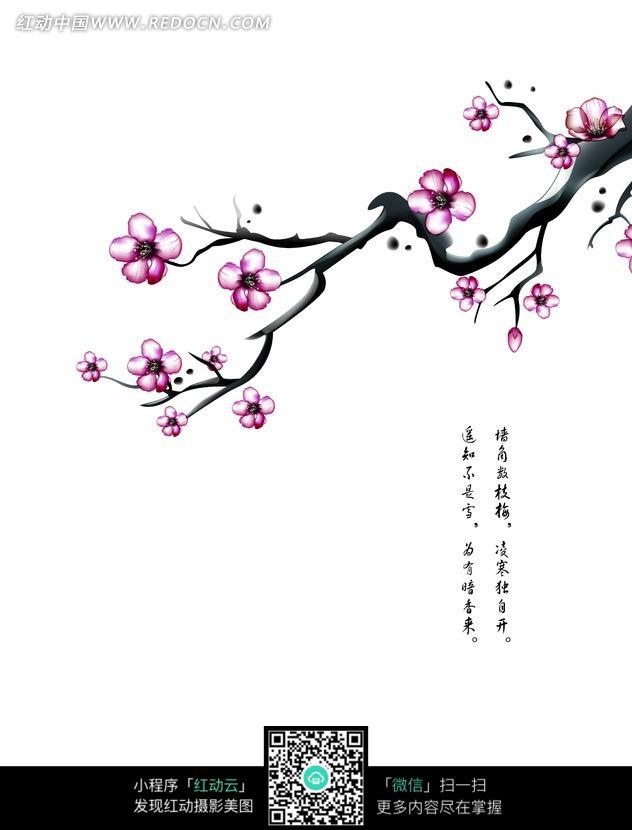 手绘站在梅花枝头的喜鹊