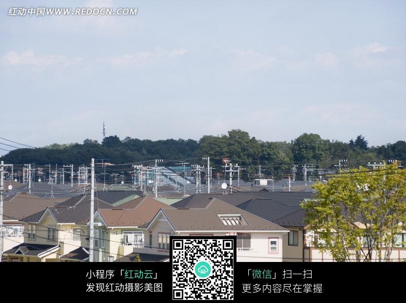 三角形屋顶的房屋和树木构成的图片