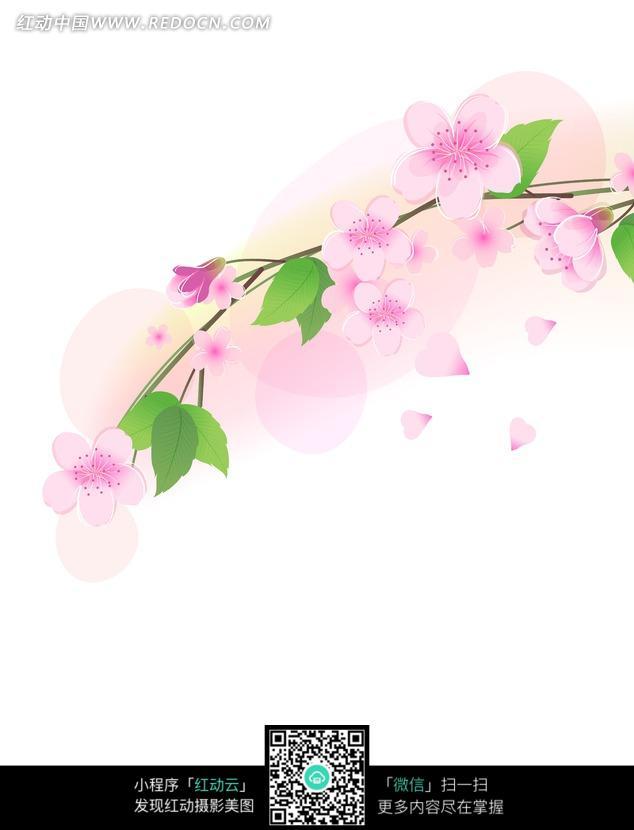 背景树枝上的桃花图片和纷飞的白色花瓣重庆是室内设计v背景图片