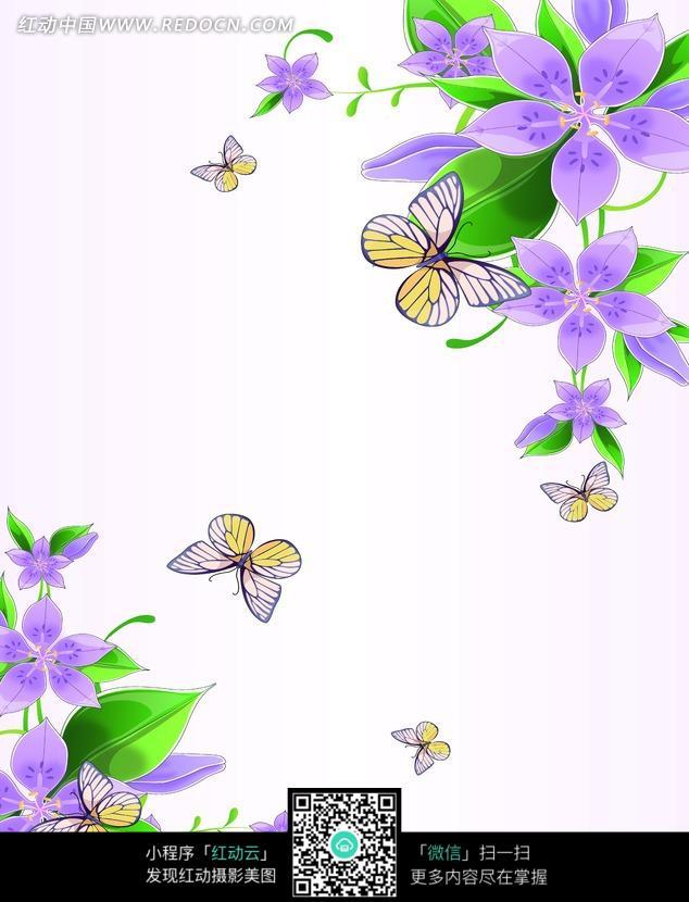 阳光下的紫色花朵 紫色花朵 阴天下的紫色花朵 紫色花朵 蓝紫色花朵的