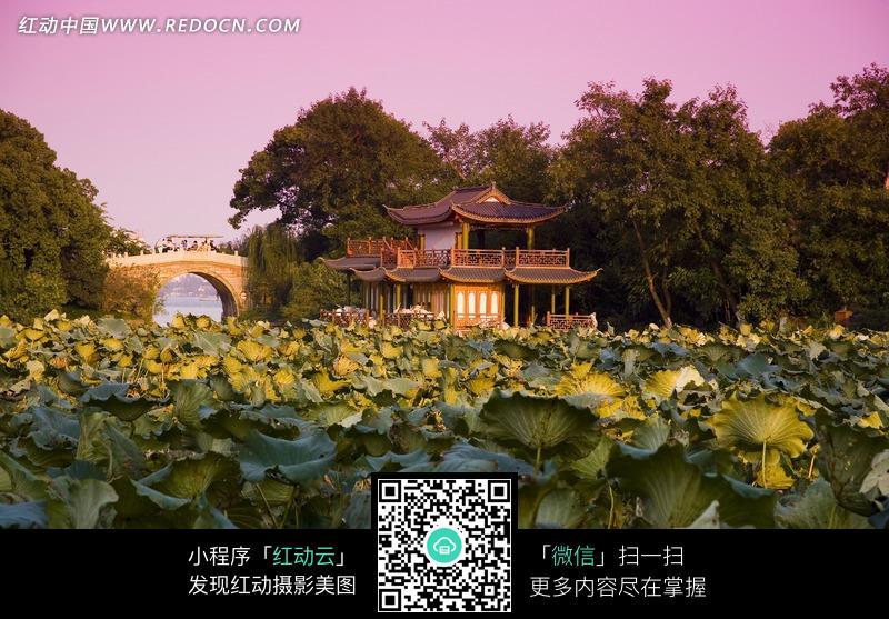 杭州西湖 美景 风景 知名景点