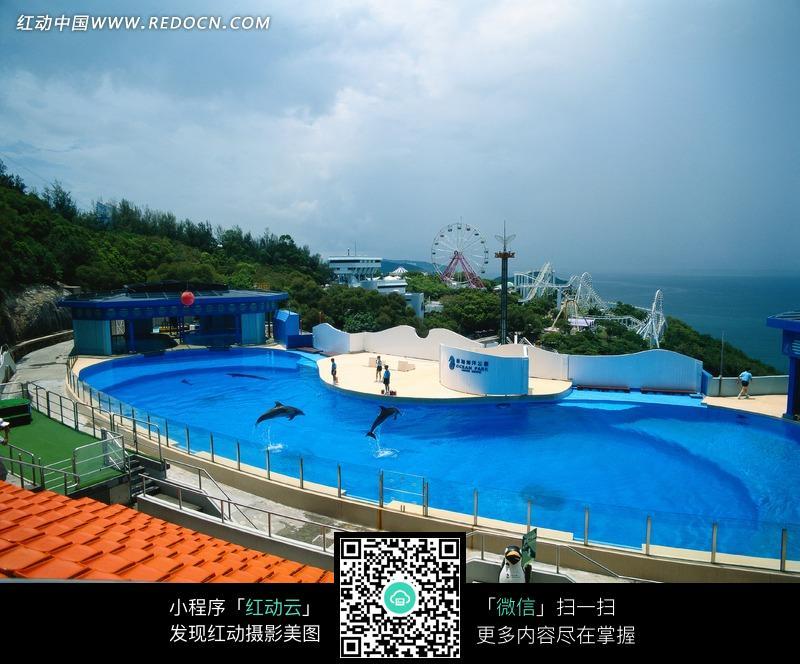 香港海洋公园海豚馆