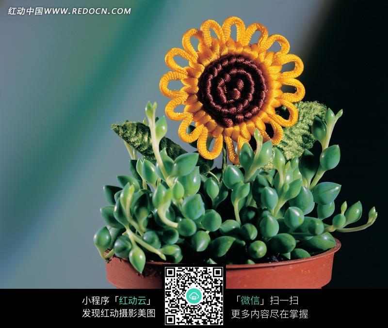 插在花盆里手工编织的向日葵花图片