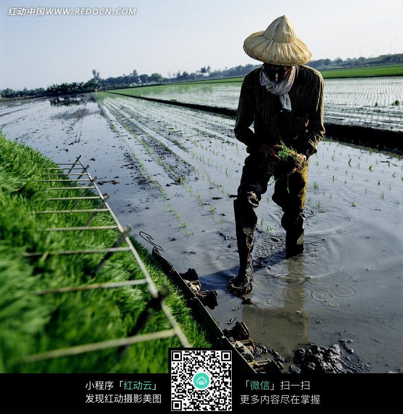 务农人员。