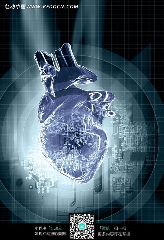心脏和电路板构成的青色图片