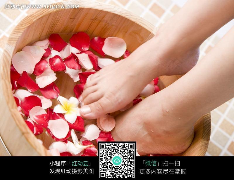足浴玫瑰泡脚玫瑰足浴玫瑰足疗