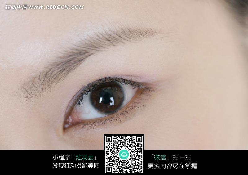 美女眼睛特写图片
