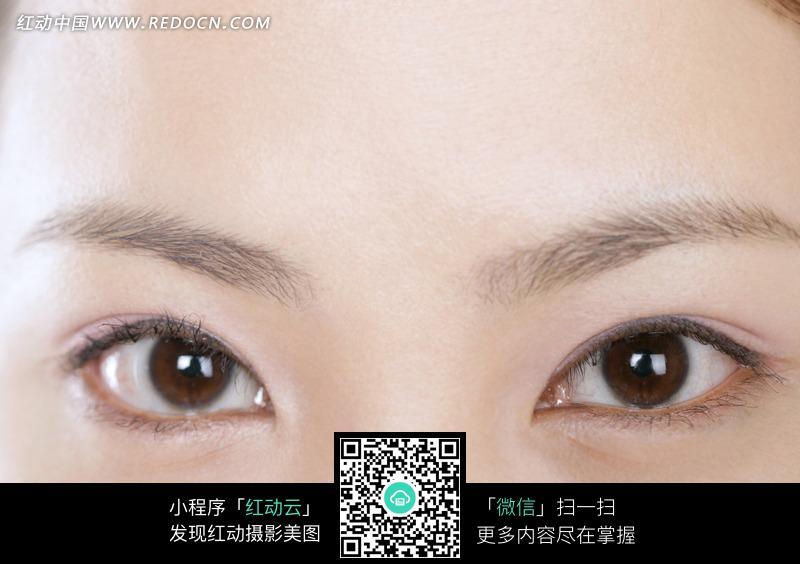 美女眼睛特写素材图片