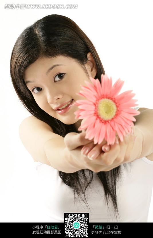 双手拿着粉色菊花伸出的女人