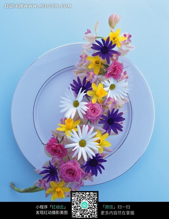 白色盘子里的彩色花朵图片