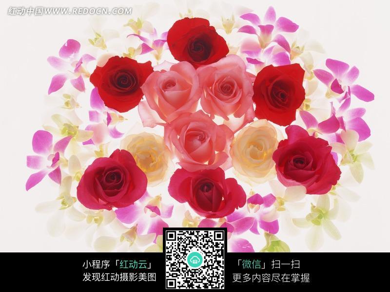 创意玫瑰花花束图片