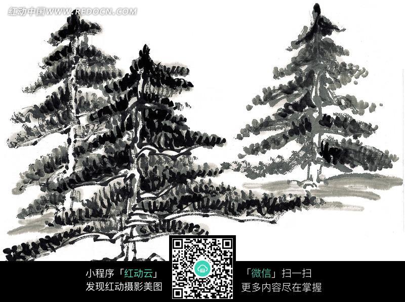 三棵松树国画