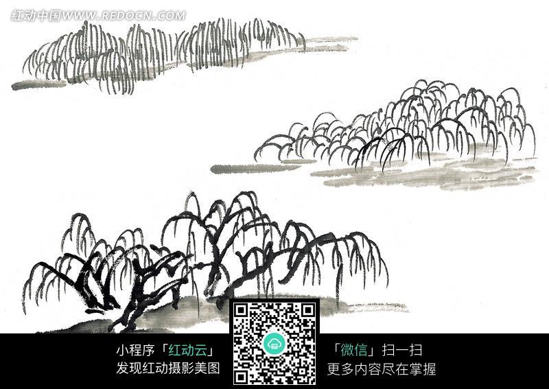 垂柳水墨画图片