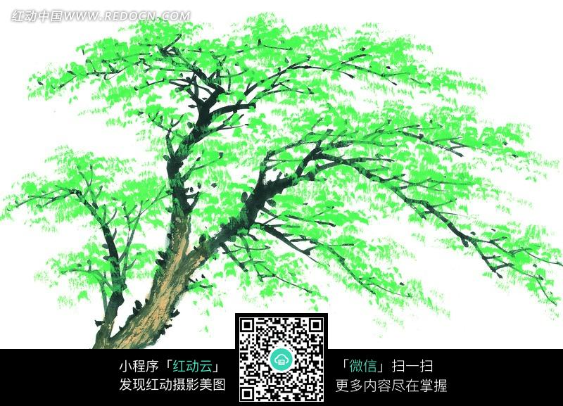 毛笔画绿色的树木图片