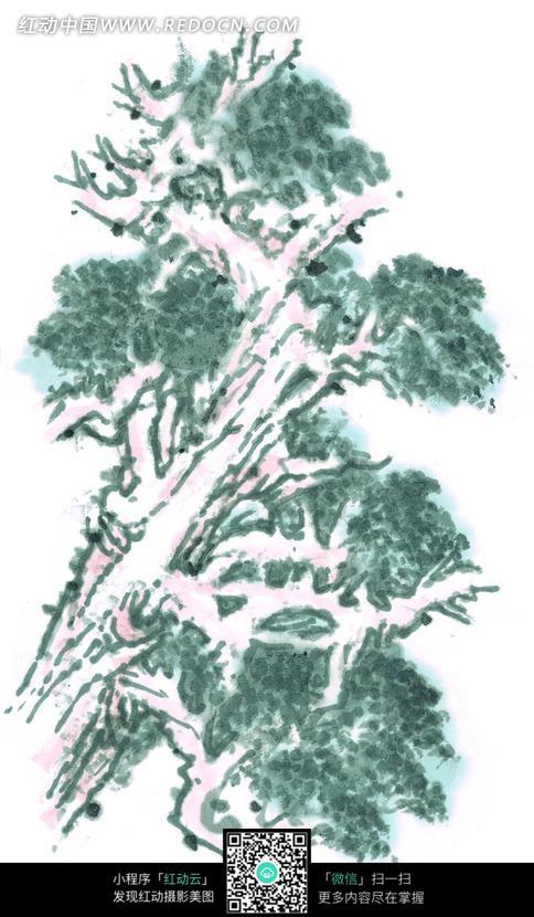 水彩画 植物素材 白色背景 手绘插画 树枝 水墨画 书画