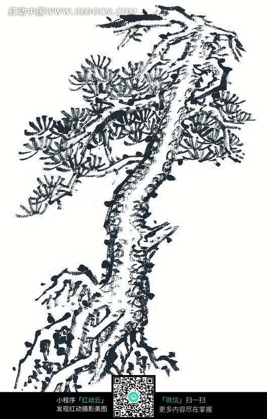 单色水墨画盘根柳树图片图片