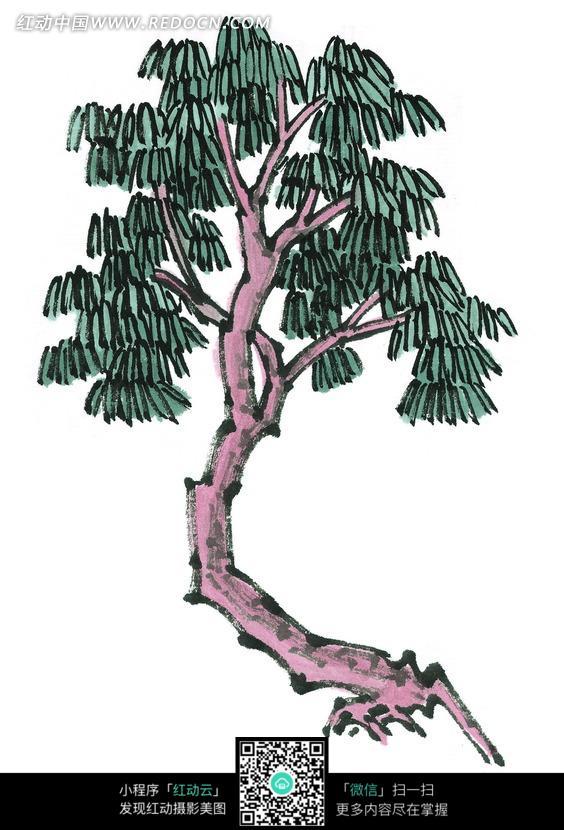 一棵绿叶树木写意画图片