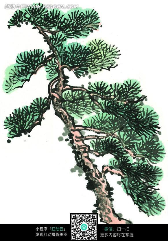 手绘彩墨青绿松树图片