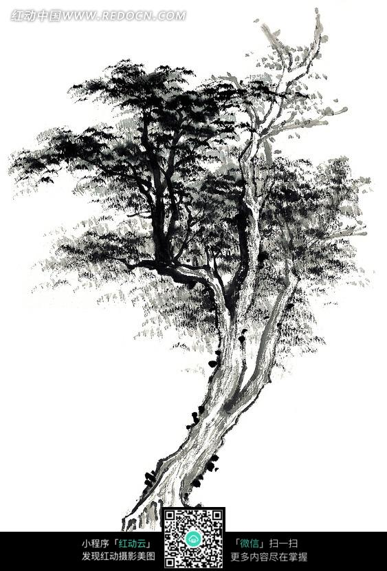 炭笔画 松树素材图片免费下载 红动网