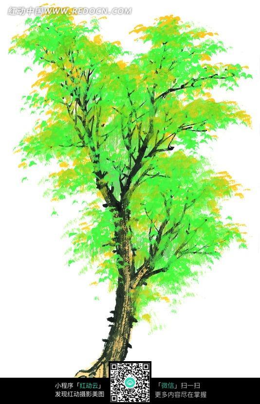 白色背景 前绿色树叶 手绘水彩画插画 树木  水墨画 书画
