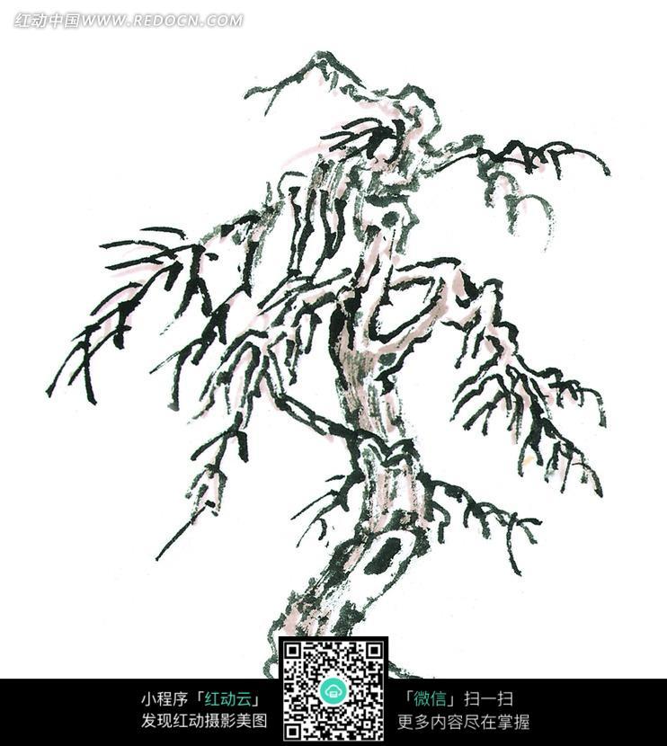 手绘国画植物抽象树枝插画图片