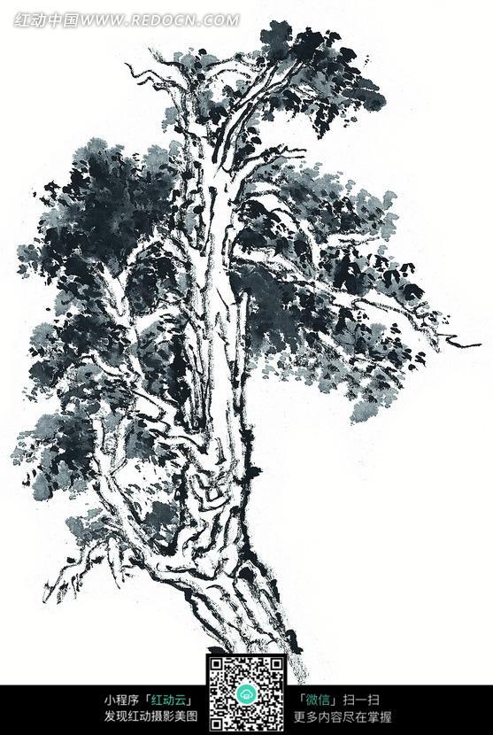 一棵茂盛的树木水墨画图片