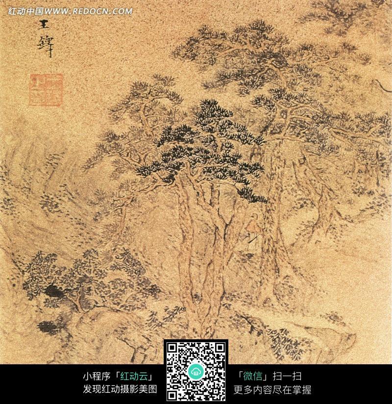 高山大树风景画图片