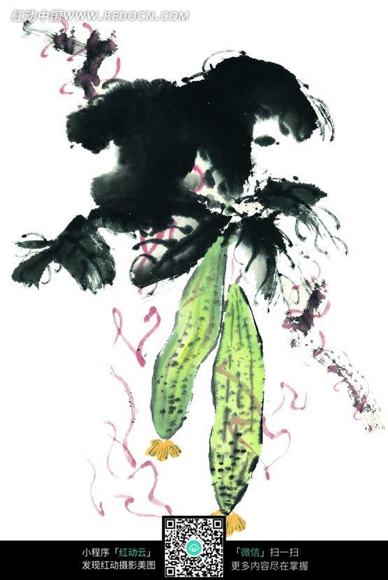 墨色叶子下的丝瓜水墨画图片