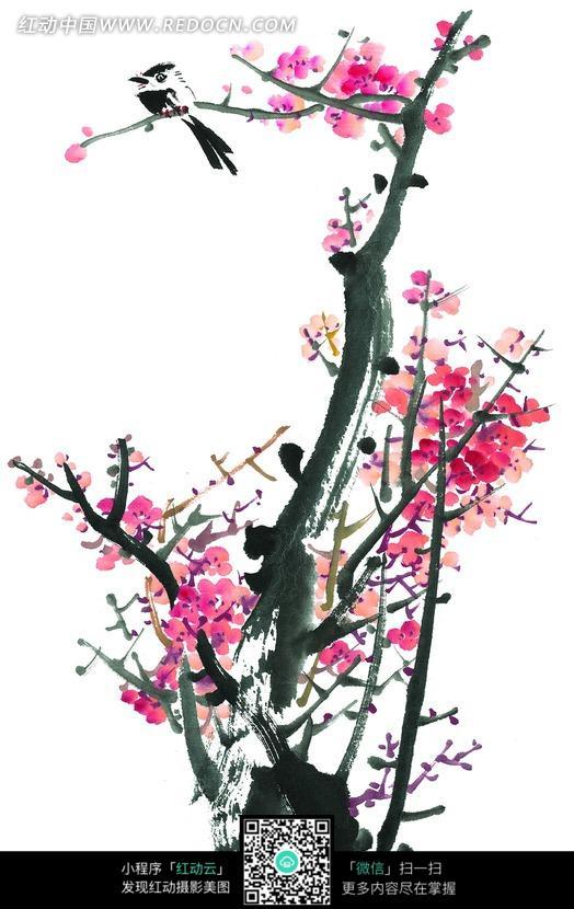 开满梅花的树枝和小鸟国画图片