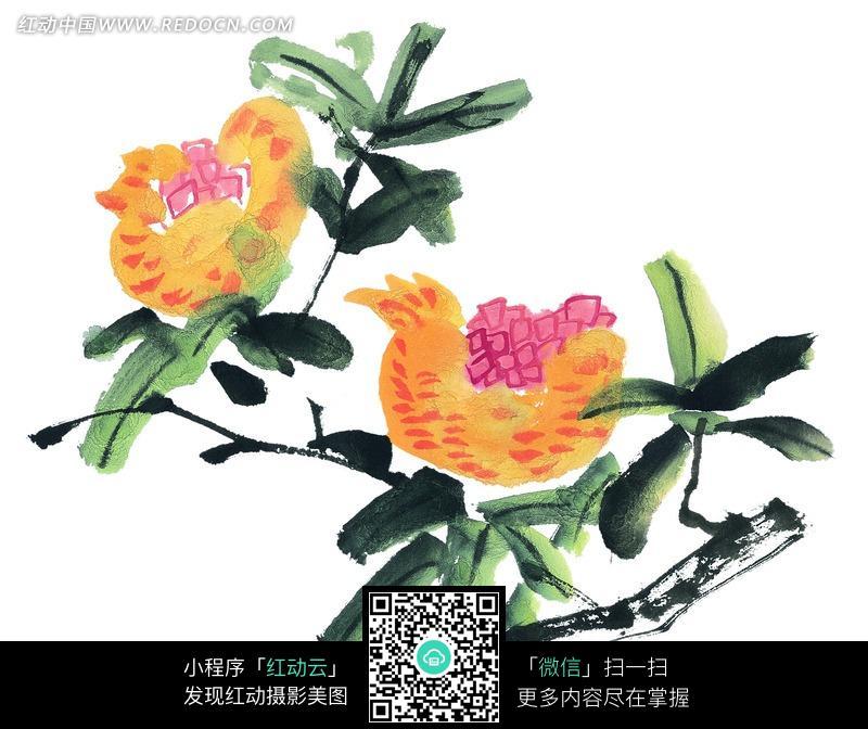绿枝上长着美丽的花朵写意画图片图片